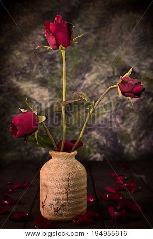 Still life style of dry out rose in the vase