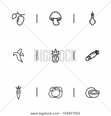 Set Of 9 Editable Cooking Icons. Includes Symbols Such As Root Vegetable, Jungle Fruit, Ananas And More. Can Be Used For Web, Mobile, UI And Infographic Design.