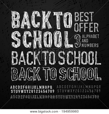 Chalk font, letters and numbers. Back to school, vector illustration