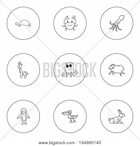 Set Of 9 Editable Zoology Icons. Includes Symbols Such As Ewe, Squid, Tentacle And More. Can Be Used For Web, Mobile, UI And Infographic Design.