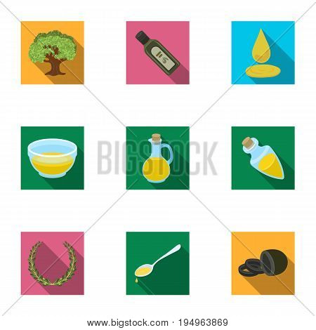 Olives, tree, branch and other products from olives.Olives set collection icons in flat style vector symbol stock illustration .