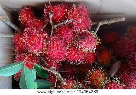 Lychees In The Farmer's Market In Hilo, Hawaii.