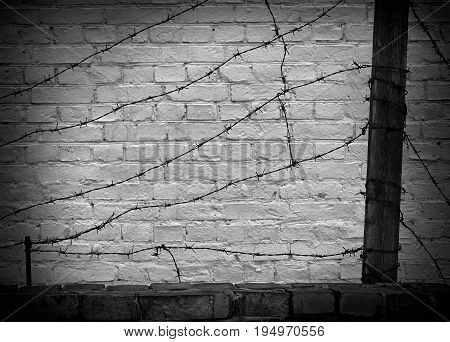 barbed wire on a black brick wall background