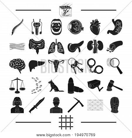 punishment, medicine, training and other  icon in black style.robbery, justice, prison, icons in set collection