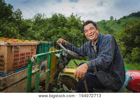 Asian farmer driving tractor in the fields during harvest in countryside. rambutan worker sitting on his tractor smiling.