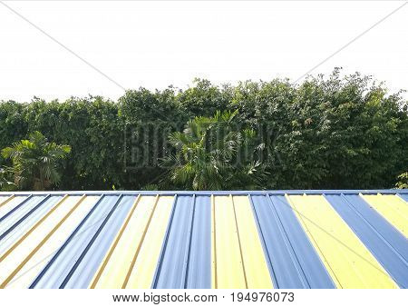 Top view of roof with tree tops  background; colorful roof in yellow and light blue stripes; copyspace for text is on top; can use as a backdrop