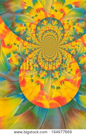 Kaleidoscope view of parrots red, yellow, and blue feathers