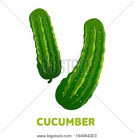 Cucumber Flat Illustration