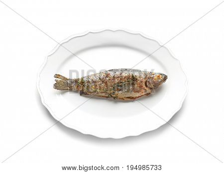 Plate with tasty fried fish on white background