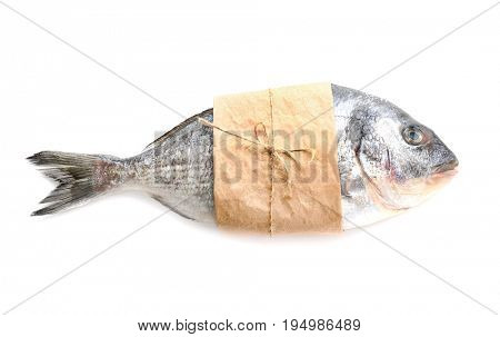 Fresh dorado fish wrapped in paper on white background