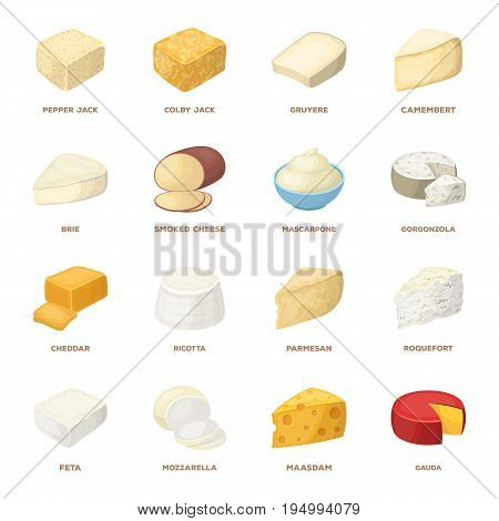 Different types of cheese. Different types of cheese set collection icons in cartoon style vector symbol stock illustration.