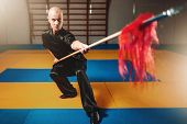 Wushu master training with spear, martial arts poster