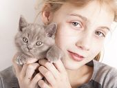 British kitten rare color (lilac) and girl poster