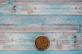 Bowl with cat kibble seen from above on blue scaffolding plank floor poster