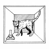 Shroedinger cat in box experiment with poison vector illustration. Interpretation of quantum mechanics. Scientific physical theory. Scratch board style imitation. Hand drawn image. poster