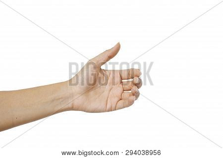 Hand Woman's Holding Something