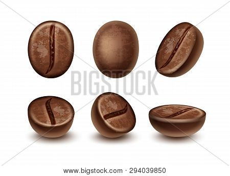 Vector Set Of Fresh Roasted Coffee Beans In Different Positions Isolated On White Background