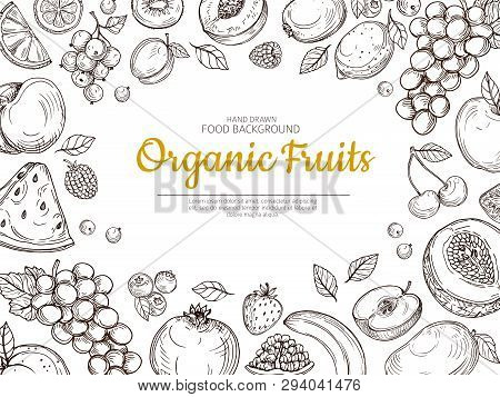 Fruit Background. Farmer Eco Fruits And Berries Vintage Sketch Healthy Food Vector Poster. Illustrat