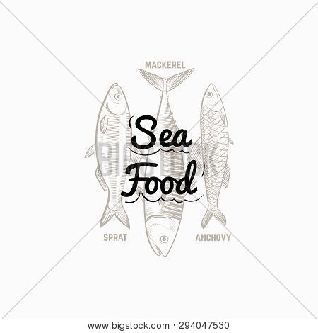 Fish Products Sign With Hand Drawn Fish Mackerel, Sprat, Anchovy Vector Design. Illustration Of Mack