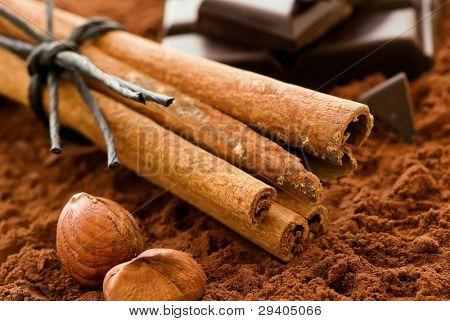 Cinnamon Sticks with Chocolate
