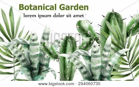 Cactus And Succulents Botanic Garden Watercolor Vector