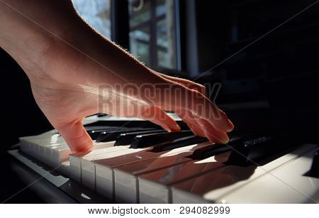 Details Of Hands Playing Piano In Room, Close Up