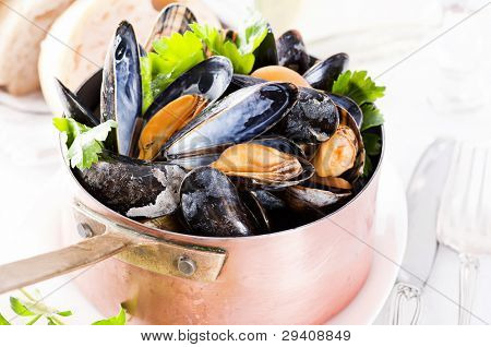 Musselns