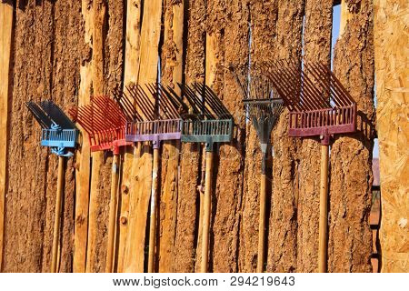 Colorful old rakes on the wooden wall