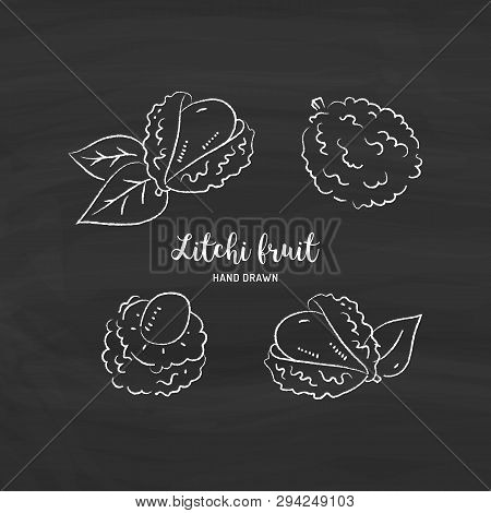 Litchi Fruit Drawing, Lychee. Sketch Of Litchi With Chalk On Blackboard. Vector Illustration