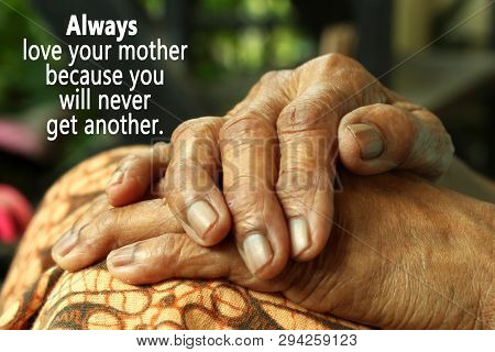 Conceptual Motivational Quote- Always Love Your Mother Because You Will Never Get Another. With Moth