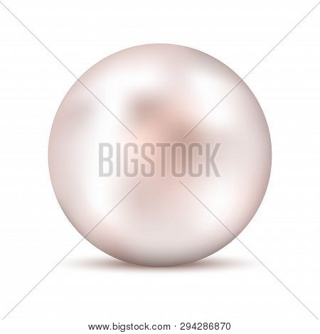 Realistic White Pink Pearl With Shadow. Shiny Oyster Pearl For Luxury Accessories. Sphere Shiny Sea