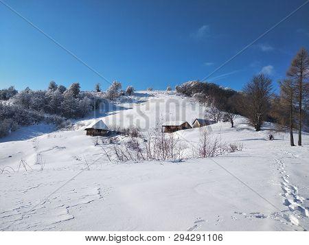 Paisaje De Invierno Con Montañas Y árboles Cargados De Nieve En Pueblo De Parva Transilvania Rumanía