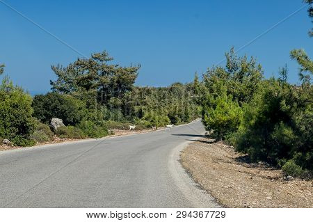 Winding Asphalt Road In The Mountains. Breathtaking Landscape And Nature.winding Serpentine.road To