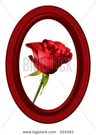 Red Rose And Oval Frame 04