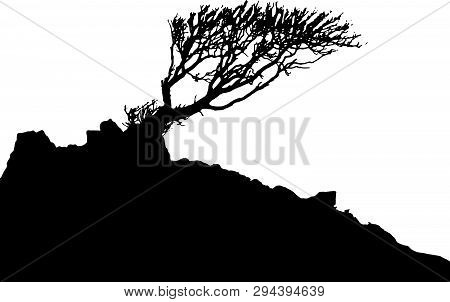 Black And White Vector Image Of A Tree And Hillside In Silhouette.