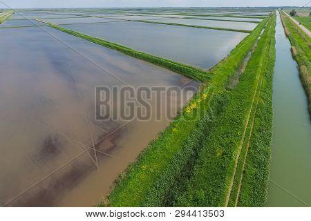 Flooded Rice Paddies. Agronomic Methods Of Growing Rice