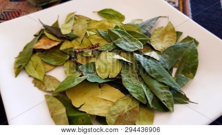 A plate of Coca leaves. In Bolivia coca leaves are sold in local markets. Coca is traditionally cultivated in the lower altitudes of the Andes poster
