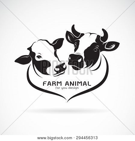 Vector Of Two Cows Head Design On A White Background. Animals Farm. Cows Icon Or Logo. Easy Editable