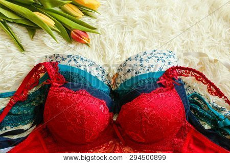 Colorful Women Sexy Underwear. Red Bra And Pantie.copy Space. Beauty, Fashion Blogger Concept. Eroti