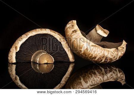 Group Of Two Halves Of Meaty Fresh Brown Mushroom Portobello Isolated On Black Glass