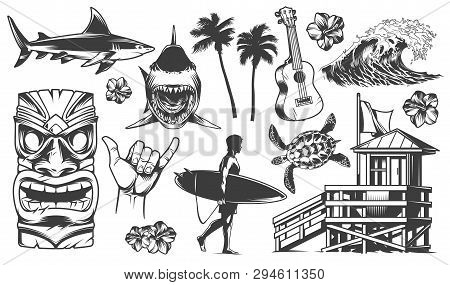 Vintage Surfing Elements Monochrome Collection With Animals Surfer Surfboards Tribal Mask Ukulele Fl