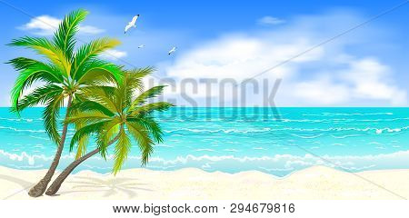 Sea Tropical Landscape. Sandy Beach With Palm Trees. Seacoast With Palm Trees, Blue Sky And White Cl