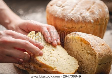 Women's Hands Breaking Homemade Natural Fresh Bread With A Golden Crust On Old Wooden Background. Ba
