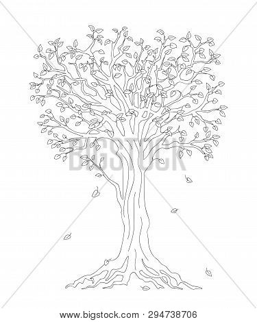 Outline Illustration Tree With Roots And Fall Down Leaves For Kid And Adult Coloring Book, Tutorials