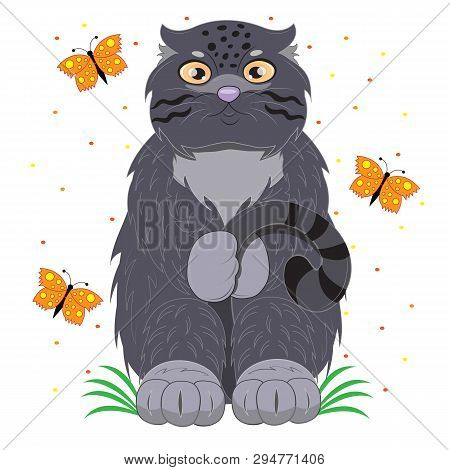 Modest Cat Manul On A Meadow With Butterflies