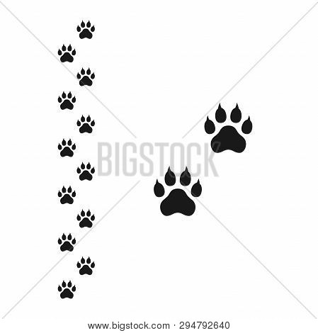 Dog Paw With Claws And Footpath Track Vector Print Mark. Dog Paw Black Silhouette Print Track With W