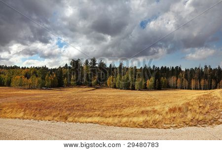 Autumn fields and forests near the North Rim of the Grand Canyon in the U.S.