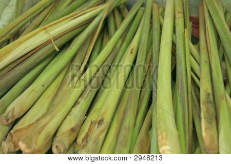 Vegetable - Lemongrass