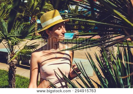 Young Attractive Girl In A Swimsuit Close Up Among Palm Trees