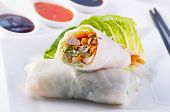 spring rolls with vegetable and chicken poster